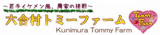 shunnasato
