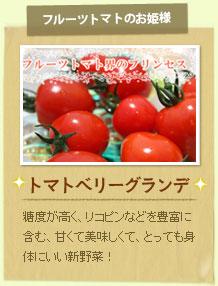 トマトベリーグランデ:糖度が高く、リコピンなどを豊富に含む、甘くて美味しくて、とっても身体にいい新野菜!