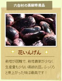 花いんげん:栽培が困難で、栽培農家が少なく生産量も少ない高級お豆。ふっくらと煮上がった味は最高です!