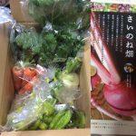 10月度 野菜図鑑ランキング入賞者さんからメッセージをいただきました🎵
