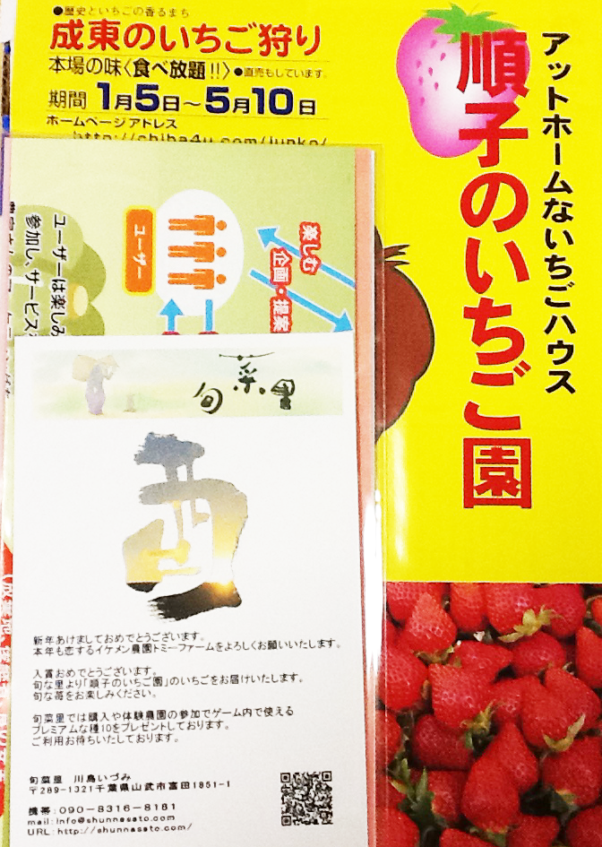 2017junkonoichigo007