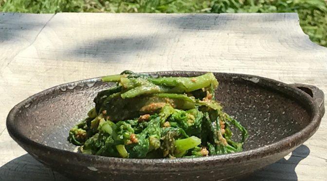 さいのね畑さんの野菜パック2017年3月