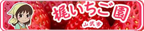 kaji-ichigo